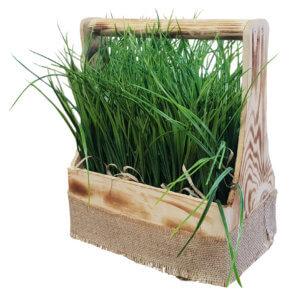 ящик с травой