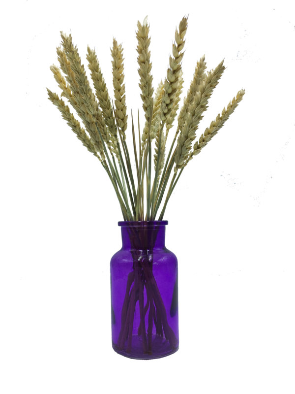 ваза бутылочка с колосками фиолетовая